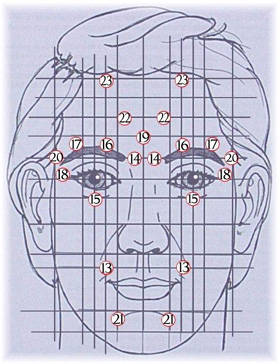 Points réflexes du visage